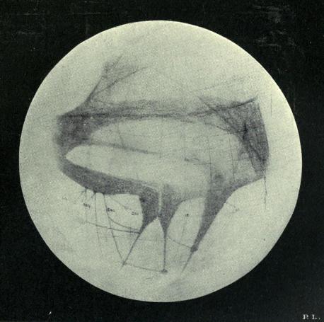 Carte de Mars par Percival Lowell en 1894