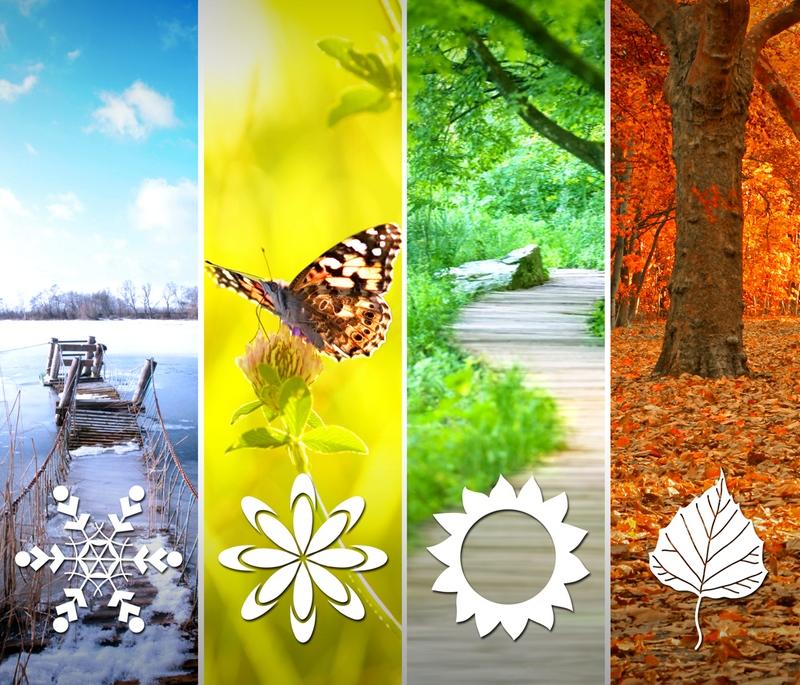Les saisons sur Terre